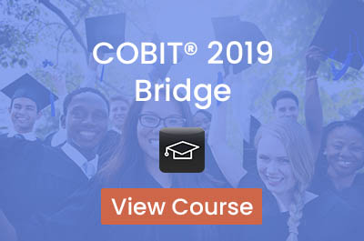 COBIT 2019 Bridge (1 jour)
