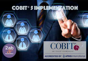 COBIT Implementation